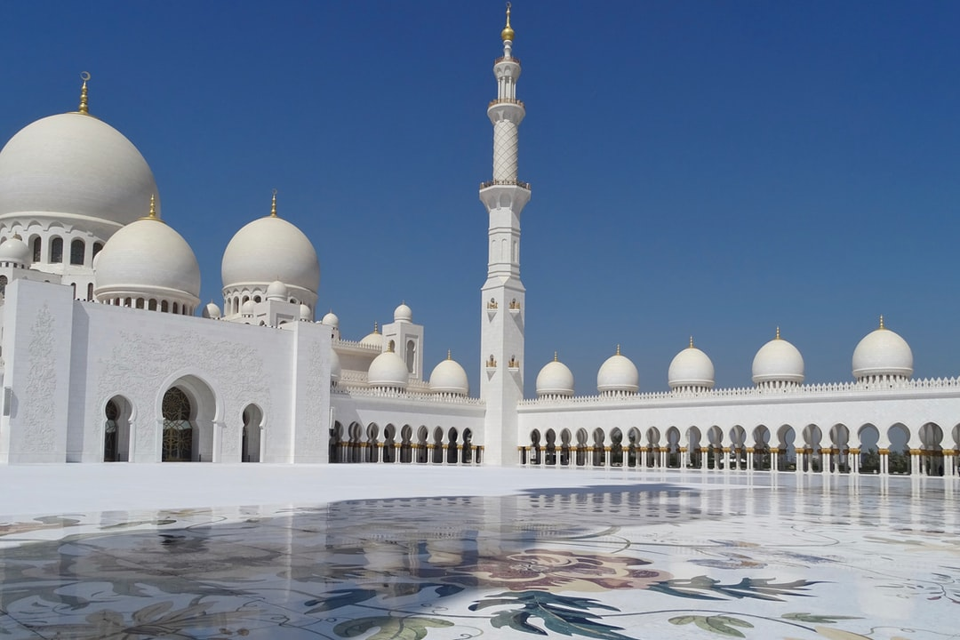 A polar bear in front of Sheikh Zayed Mosque